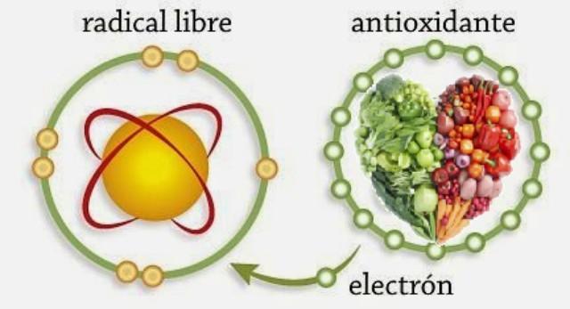 qué comida ayuda a ovular