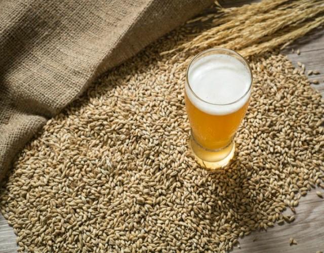 levadura de cerveza