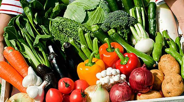 La dieta alcalina, tu mejor aliada para estar siempre saludable