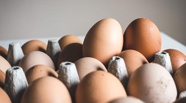 ¿Qué aporta la vitamina B12?