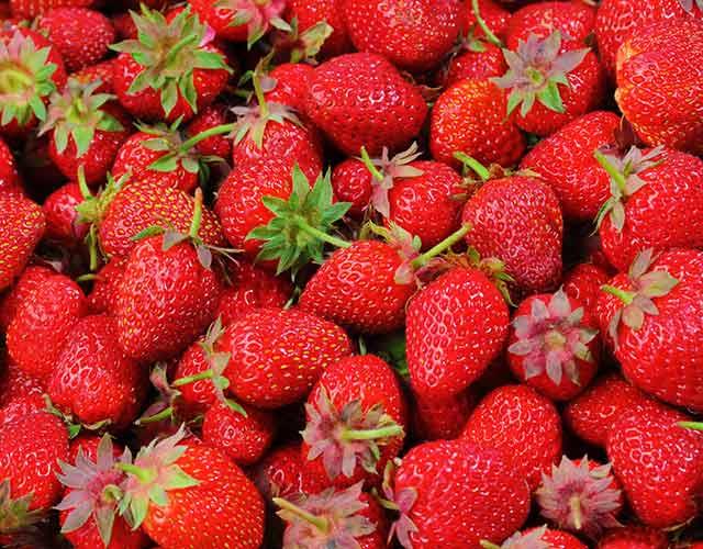 Los beneficios de las fresas