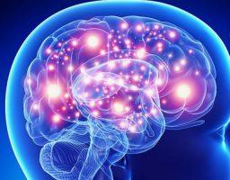 Crisis comicial o epiléptica, qué hacer