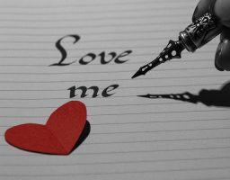 Síndrome de Anna Karenina u obsesión del amor