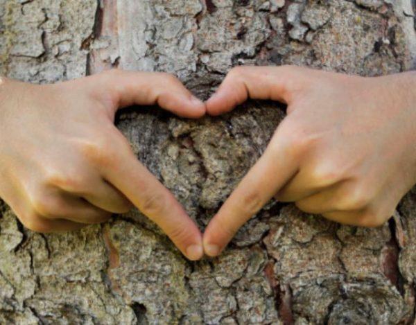 6 beneficios del contacto con la naturaleza