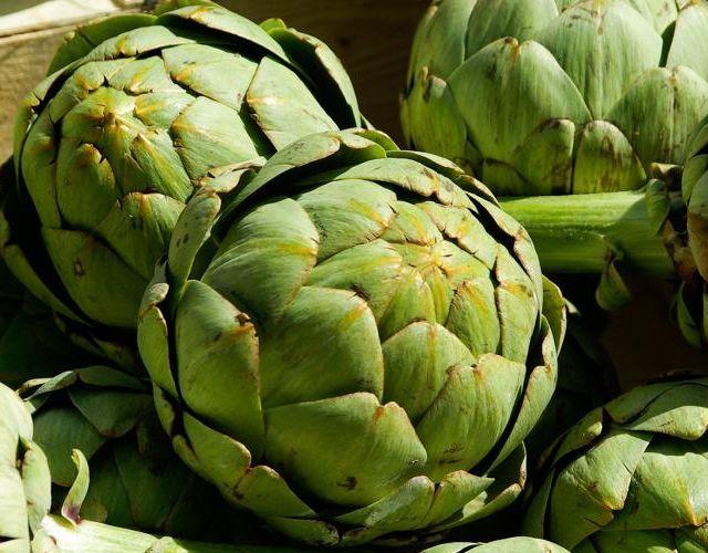 Alcachofas: destructoras de toxinas