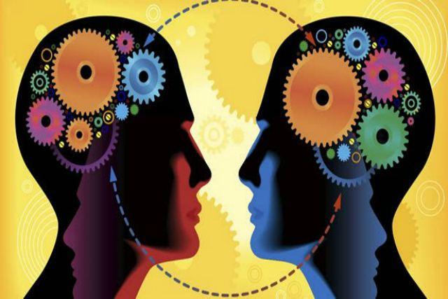 meta-cognición