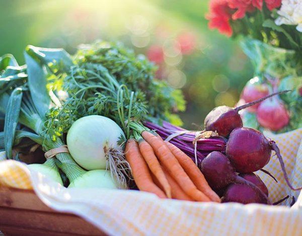 las verduras con mas proteinas