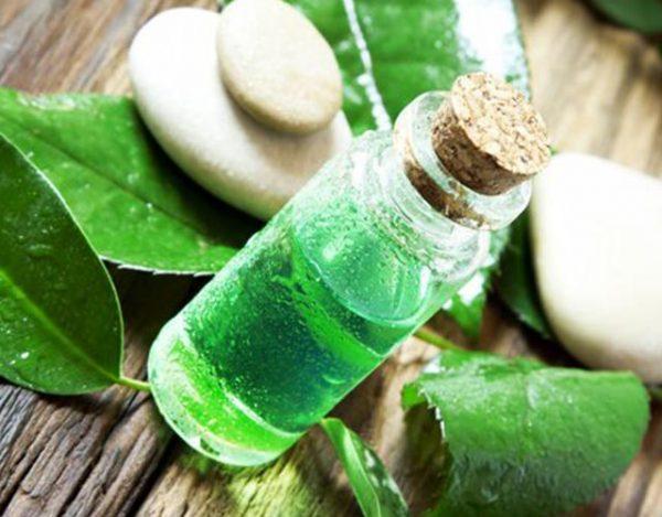 Remedios con el árbol del té