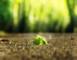 cómo ser más optimista