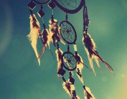 7 proverbios indios americanos para reflexionar