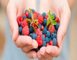 mejores antioxidantes naturales