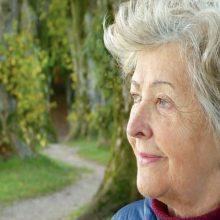 sofocos de la menopausia