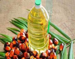 aceite de palma